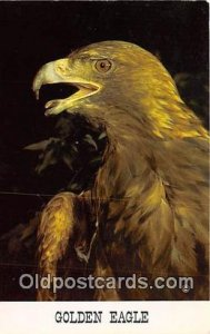 Golden Eagle Unused