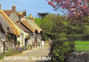 Isle of Wight Brighstone Postcard by J. Salmon Ltd Q20