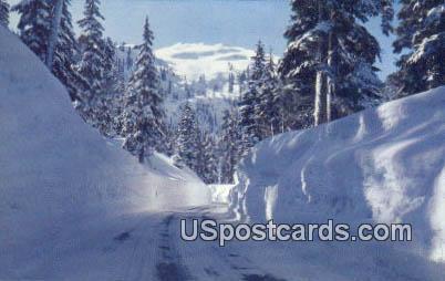 Mile High Snowbanks