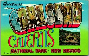CARLSBAD CAVERNS New Mexico Large Letter Postcard National Park 1956 Cancel