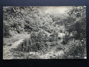 Somerset FROME Vallis c1913 RP Postcard by F.H. Dyke of Frome 239