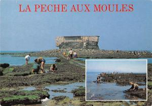 France La Peche Aux Moules