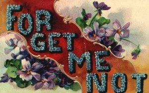 Vintage Postcard 1906 For Get Me Not Big Blue Flower Letters Floral Artwork