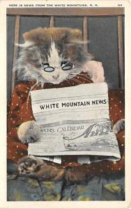 Cat Post Card Old Vintage Antique News, White Mountains Unused