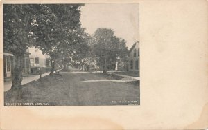 Lima NY, New York - Rochester Street - Pub by H. F. Sanger Card - DB