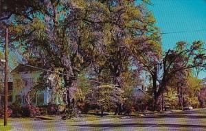 South Carolina Manning Street Scene