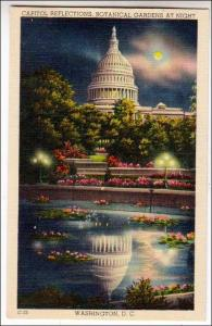 Capitol Reflections, Washington DC