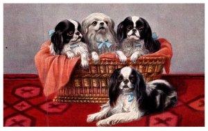 Dog , puppies in basket