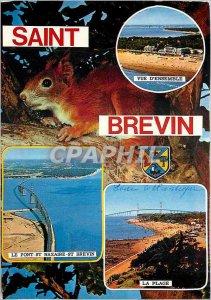 Postcard Modern Saint Brevin Squirrel Bridge St Nazaire St Brevin beach