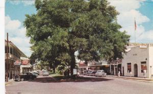 ZEPHYRHILLS, Florida, 50-60s; Street View , Downtown