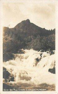 LP17  Livingston  Montana Postcard  RPPC View on Creek
