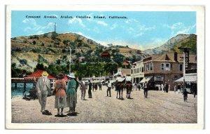 Central Avenue, Avalon, Catalina Island, CA Postcard *5Q12