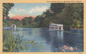 Florida Silver Spring Glass Bottom Boats On Beautiful Silver Springs