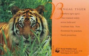 Bengal Tiger World Wildlife Fund 1998