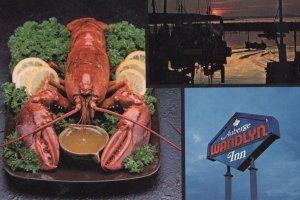 Giant Lobster Dish at Wandlyn Inn Canada Postcard
