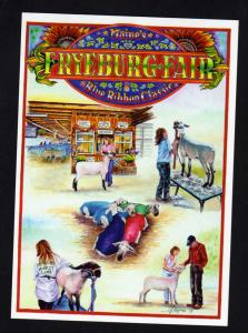 ME Fryeburg County Fair, Maine Postcard, Sheep, Lambs PC
