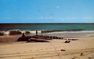 MA - Cape Cod, Old Shipwreck on the Beach