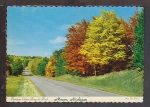 Fall View Mason MI Postcard BIN