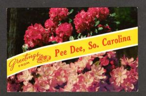 SC Greetings From Pee Dee South Carolina Postcard PC Flowers