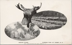 Digby NS Indian Camp Moose Curing Fish Multiview Unused Postcard F88
