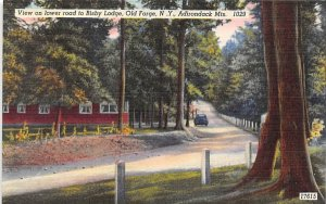 Bisby Lodge Old Forge, New York Postcard