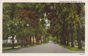 New Hampshire Rochester Charles Street Curteich
