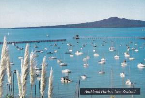 Sailboats, Auckland Harbor, AUCKLAND, New Zealand, 50-70´s