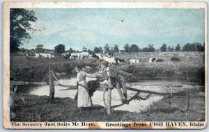 1921 FISH HAVEN, Idaho Greetings Postcard Scenery Just Suits Me Here Cattle