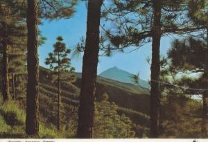 Postal 60084: El Teide al atardecer (Tenerife)