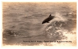 Porpoise Out of Water, picture taken from U.S Submarine K.8