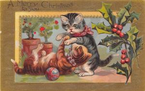 C91/ Cat Animal Postcard Merry Christmas c1910 Gold Holy Berries Dressed 4