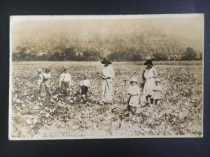 RPPC Real Picture Postcard Georgia USA White Women Children Picking Cotton Cover