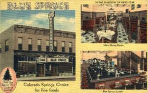 Blue Spruce - Linen Colorado Springs, CO, USA Postcard Post Cards Old Vintage...