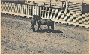 Oxford ME County Fair Getting Ready Horse Fence Real Photo Postcard