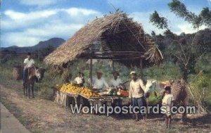 Native Fruitstand Panama Panama Unused