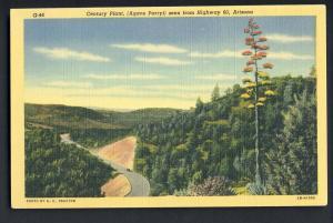 Globe/Showlow, Arizona/AZ Postcard,Century Plant, Highway 60