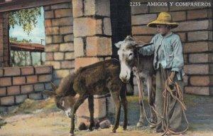 Amigos Y Companeros, Two Donkeys and a Boy, 1930-40s