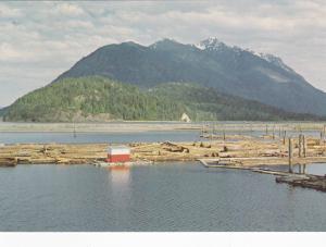 Logging Booms & Mt. Kusam, Vancouver Island, B.C., Canada, 50-70s