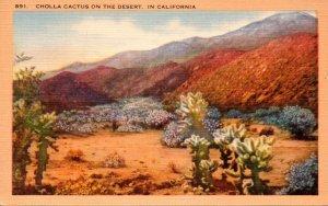 Cactus Cholla Cactus On The Desert In California