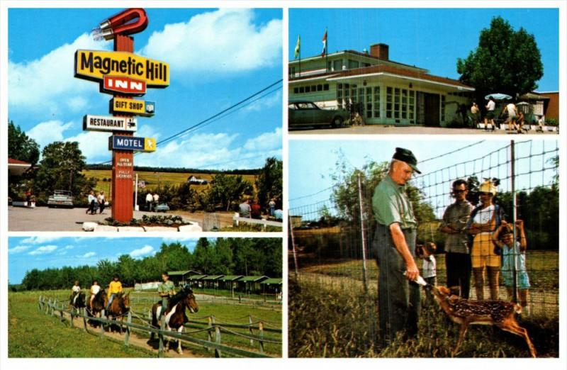 12316 New Brunswick Magneric Hill 1960´s Magnetic Hill Inn , Pony Rides, Zoo...