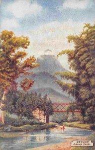 Adam's Peak Ceylon Sri Lanka 1910c Tuck postcard