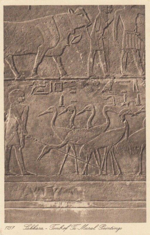 SAKKARA, Egypt , 1910-20s; Tomb of Ti, Mural Paintings # 2