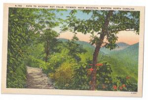 Chimney Rock Asheville NC Path to Hickory Nut Falls Linen