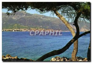 Postcard Moderne Menton General view from the Cap Martin