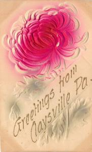 Claysville Pennsylvania~Airbrushed Embossed Flower Greeting~c1910 Postcard