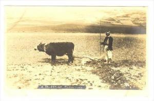 RP  A palestine Plowman (Farming), 00-10s