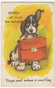 France; Istres Novelty Foldout PPC, c 1950's, Dog Holding Briefcase, Unposted