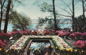 Alabama Mobile The Pool In Bellingrath Gardens