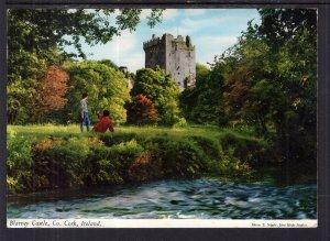 Blarney Castle,Cork,Ireland BIN