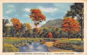 Cobleskill New York Scenic Waterfront Greeting Antique Postcard K101728